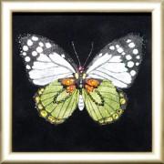 Бабочка Капустница, 12х12 см, 110 кристаллов